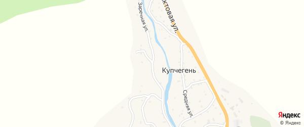Заречная улица на карте села Купчегеня Алтая с номерами домов