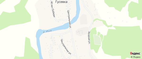 Центральная улица на карте села Гусевки Алтая с номерами домов