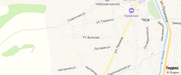 Улица Волкова на карте села Чоя Алтая с номерами домов