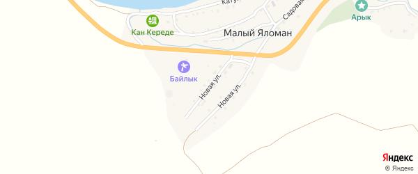 Новая улица на карте села Малого Яломана Алтая с номерами домов