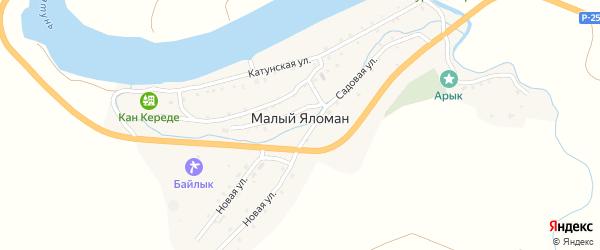Садовая улица на карте села Малого Яломана Алтая с номерами домов