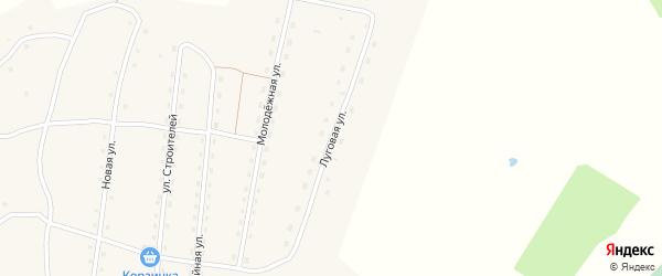 Луговая улица на карте села Каракокши Алтая с номерами домов