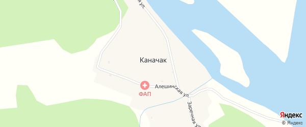 Заречная улица на карте села Каначака Алтая с номерами домов
