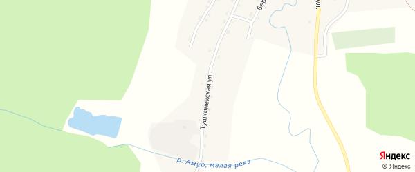 Тушкинекская улица на карте села Сейка Алтая с номерами домов
