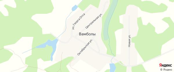 Карта села Вамболы в Томской области с улицами и номерами домов