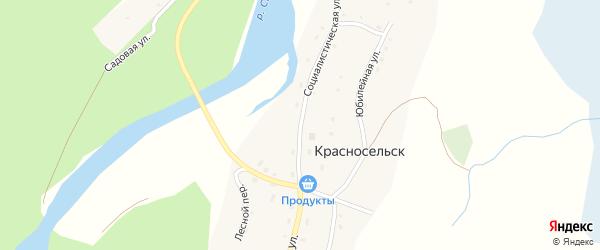 Социалистическая улица на карте села Красносельска Алтая с номерами домов