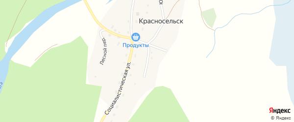 Сосновый переулок на карте села Красносельска Алтая с номерами домов