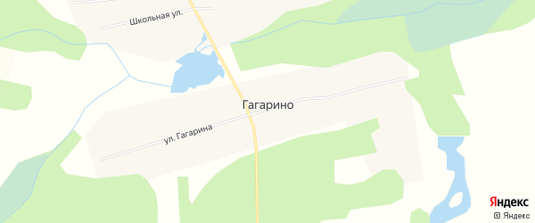 Карта села Гагарино в Томской области с улицами и номерами домов