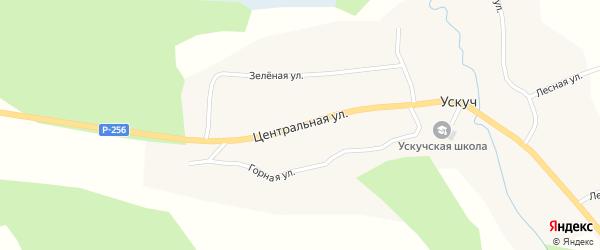 Центральная улица на карте села Ускуча Алтая с номерами домов