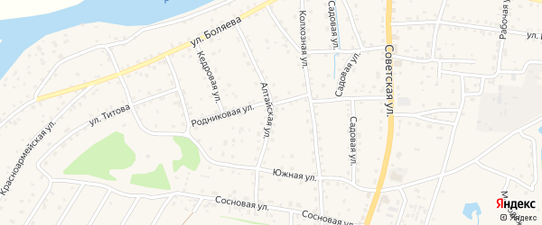 Алтайская улица на карте села Турочак Алтая с номерами домов