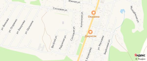 Сосновая улица на карте села Турочак Алтая с номерами домов