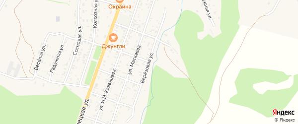 Березовая улица на карте села Турочак Алтая с номерами домов