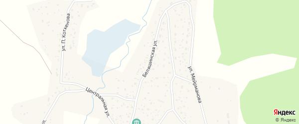 Беляшинская улица на карте села Беляши Алтая с номерами домов