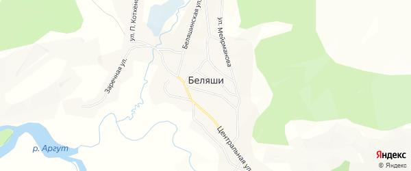 Карта села Беляши в Алтае с улицами и номерами домов