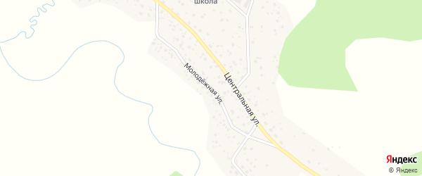 Молодежная улица на карте села Беляши Алтая с номерами домов