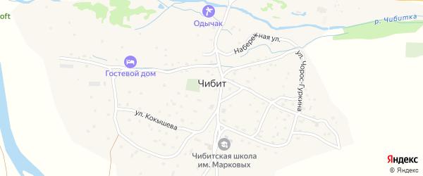 Крайняя улица на карте села Чибита Алтая с номерами домов