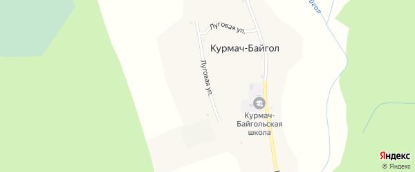 Луговая улица на карте села Курмача-Байгла Алтая с номерами домов