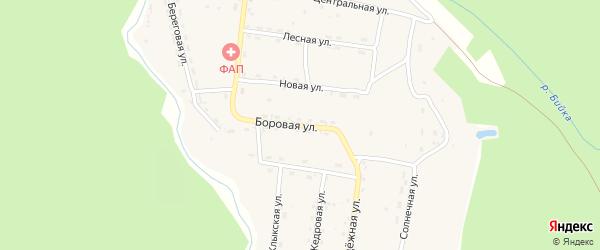 Боровая улица на карте села Бийки Алтая с номерами домов