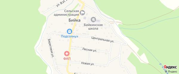 Центральная улица на карте села Бийки Алтая с номерами домов