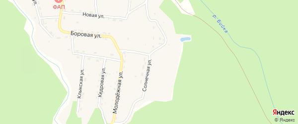 Солнечная улица на карте села Бийки Алтая с номерами домов