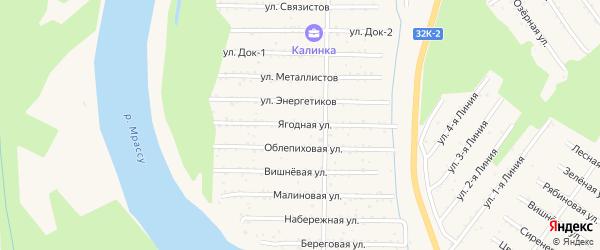 Ягодная улица на карте территории ТСН Калинки с номерами домов