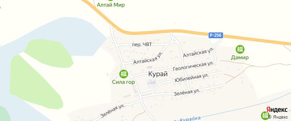 Алтайская улица на карте села Курая Алтая с номерами домов
