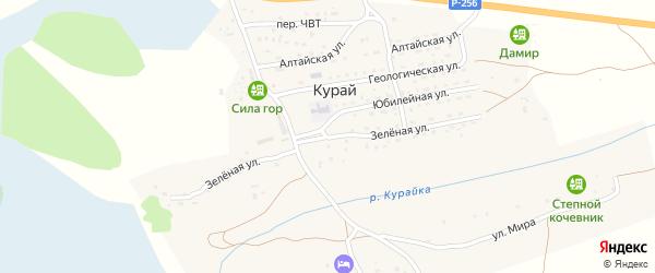 Зеленая улица на карте села Курая Алтая с номерами домов