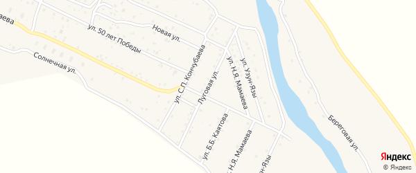 Луговая улица на карте села Улагана Алтая с номерами домов