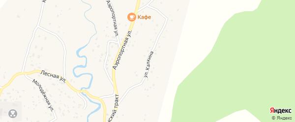 Улица Калкина на карте села Улагана Алтая с номерами домов