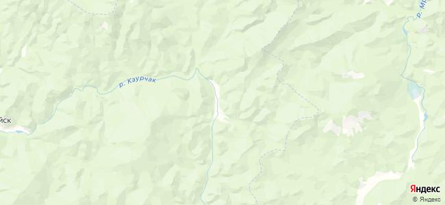 Талон на карте