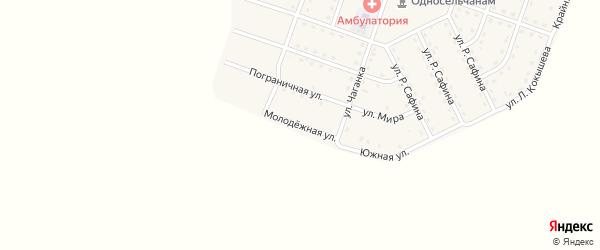 Молодежная улица на карте села Нового Бельтира Алтая с номерами домов
