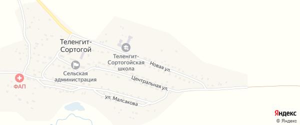 Новая улица на карте села Теленгита-Сортогой Алтая с номерами домов