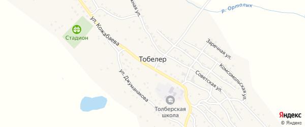 Улица Дружбы на карте села Тобелера Алтая с номерами домов