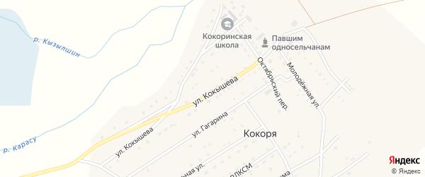 Улица Гагарина на карте села Кокори Алтая с номерами домов