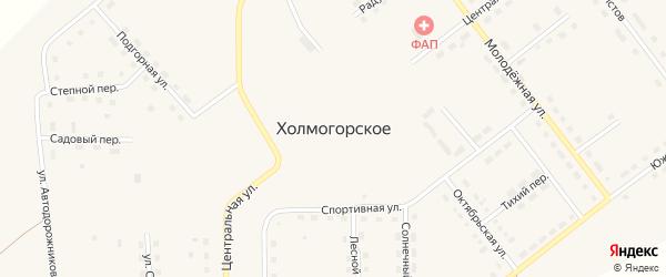 Дружный переулок на карте Холмогорского села Красноярского края с номерами домов