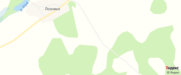 Карта деревни Дзюбино в Красноярском крае с улицами и номерами домов