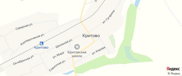 Карта села Критово в Красноярском крае с улицами и номерами домов