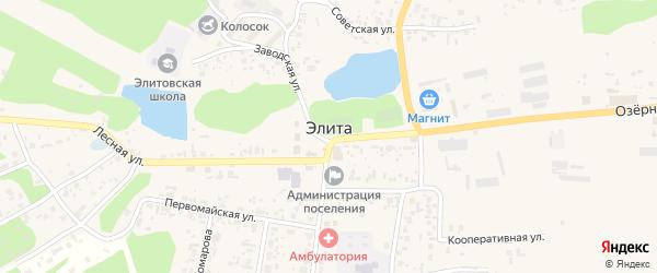 3-я Ключевая улица на карте поселка Элиты Красноярского края с номерами домов