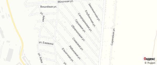 Облепиховая улица на карте Красноярска с номерами домов