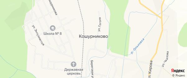 Карта поселка Кошурниково в Красноярском крае с улицами и номерами домов