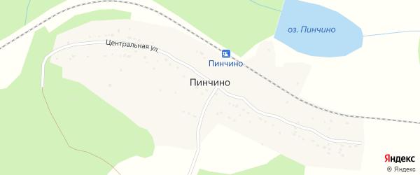 Линейная улица на карте поселка Пинчино Красноярского края с номерами домов
