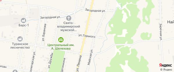 Улица Горького на карте Турана с номерами домов