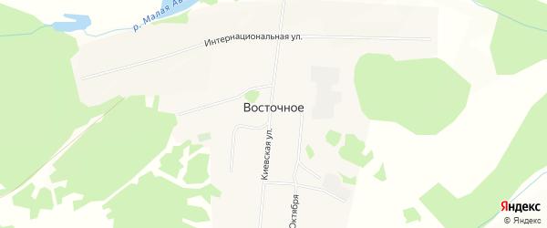 Карта Восточного села в Красноярском крае с улицами и номерами домов