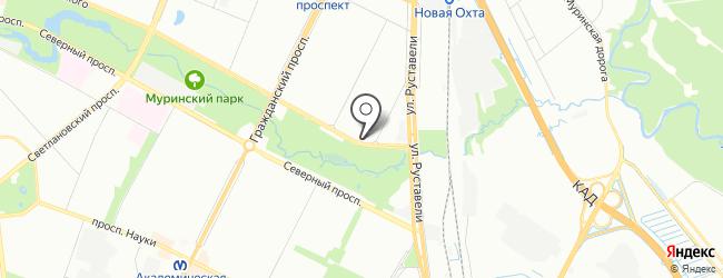 Проститутка Виктория метро Гражданский проспект СПб