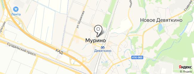 Проститутка Кристина метро Девяткино СПб
