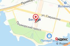 Санкт-Петербург, ул. Савушкина, д. 126, лит. А