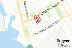 Санкт-Петербург, В.О, большой пр. д. 89