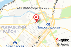 Санкт-Петербург, ул. Всеволода Вишневского, д. 1