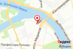 Санкт-Петербург, ул. Академика Павлова, д. 6 к. 1