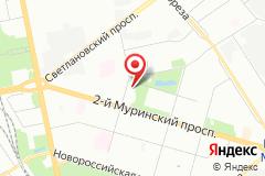 Санкт-Петербург, улица Орбели, 19